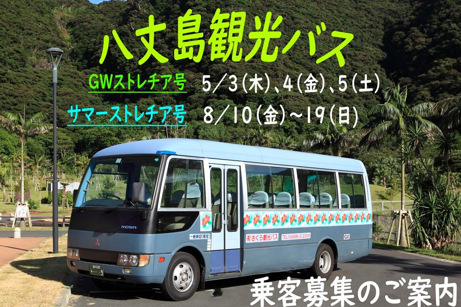 八丈島観光バス【GWストレチア号】【サマーストレチア号】乗客募集のご案内