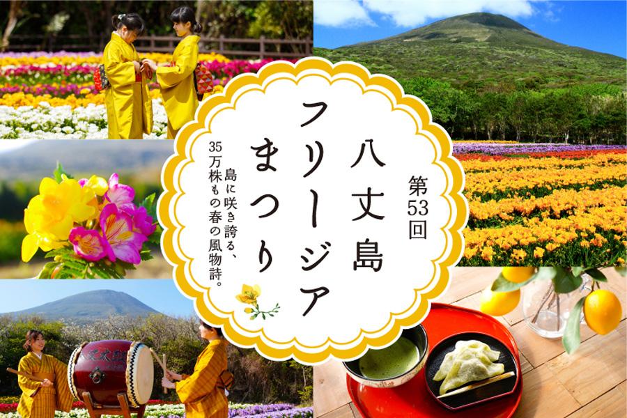 第53回八丈島フリージアまつり 3/24(日)~4/7(日)