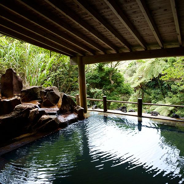 野趣あふれる露天風呂の<br /> 裏見ヶ滝温泉