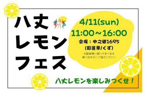 八丈レモンフェス 4/11(日)