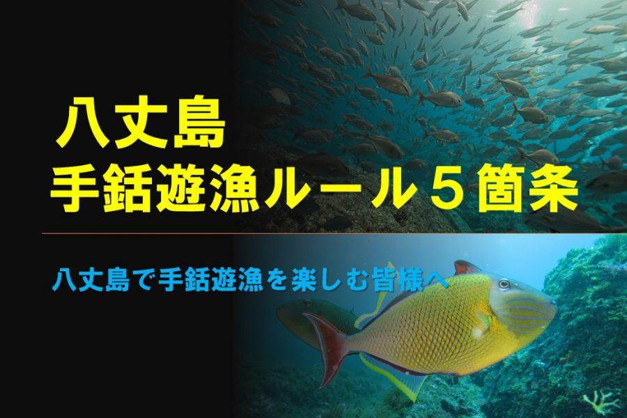 八丈島手銛遊漁ルール5箇条 2021年夏季